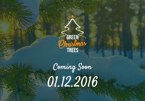 For Christmas, we at Green Network want to give a gift to nature together with all of you!