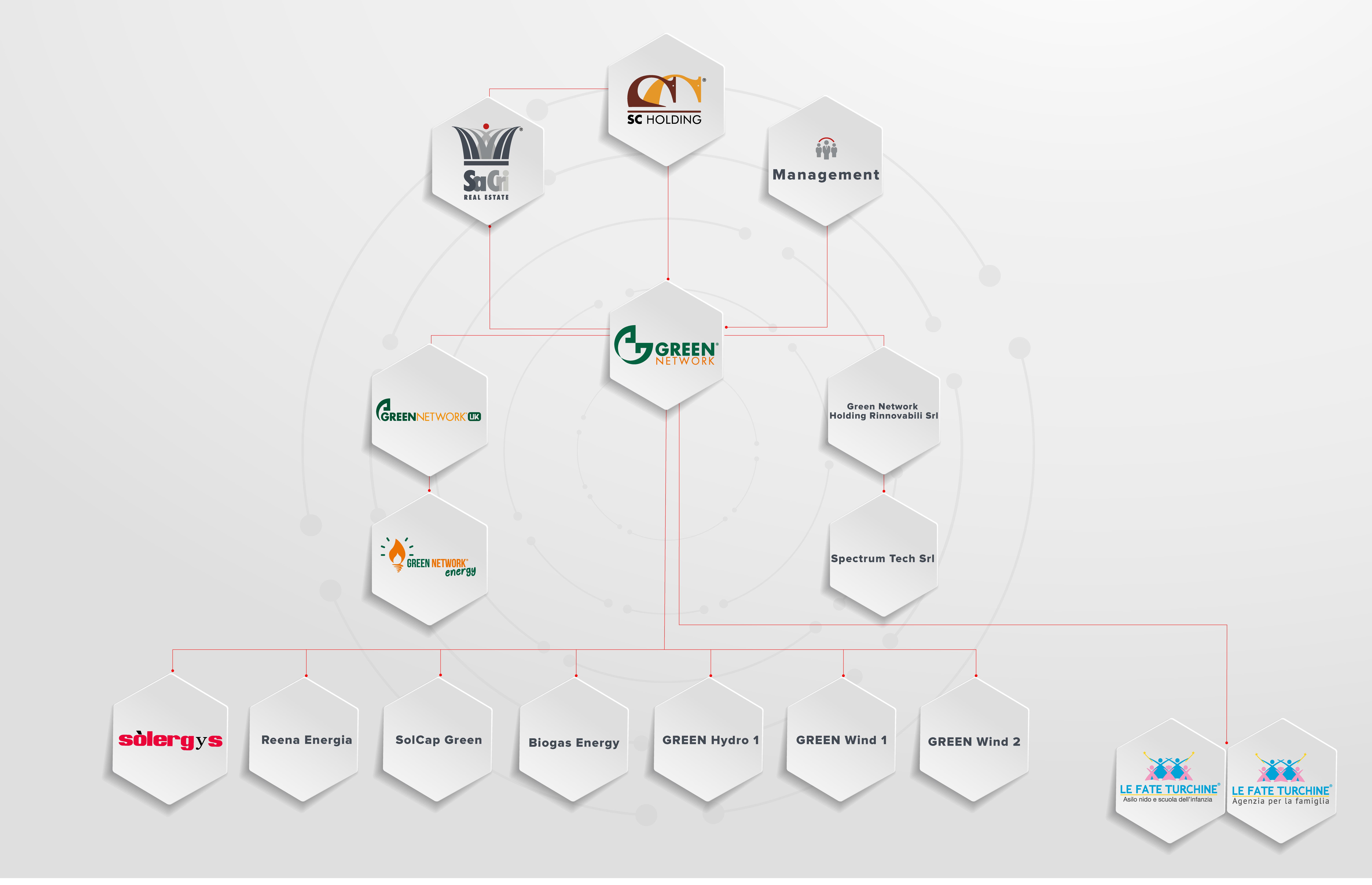 organizzazione societaria green network